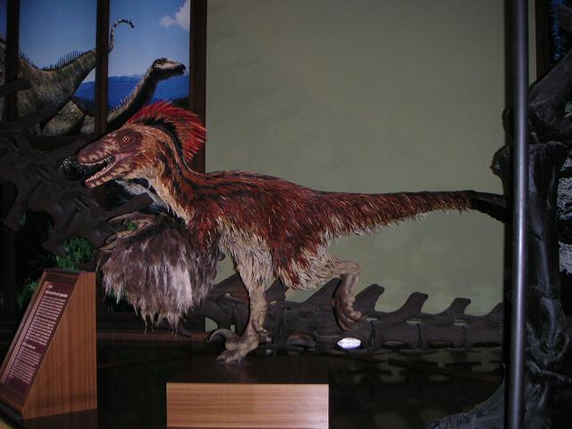 Deinonychus mit Federn