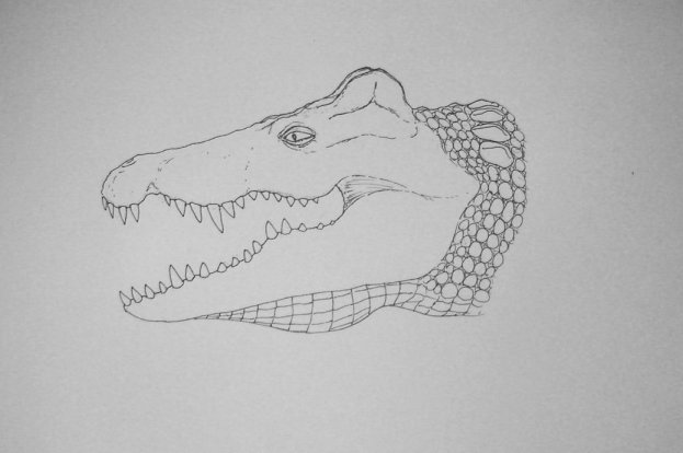 Crocodylus robustus- wurde allerdings nur 4-5m lang
