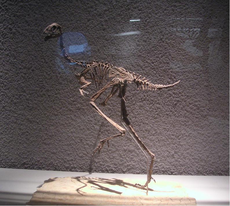 Beinahe ein echter Dinosaurier…   Bestiarium