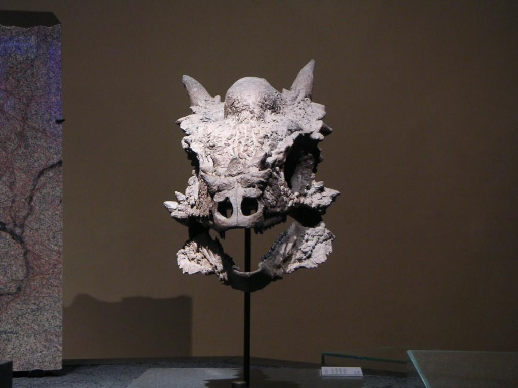 Stygimoloch spinifer Schädel