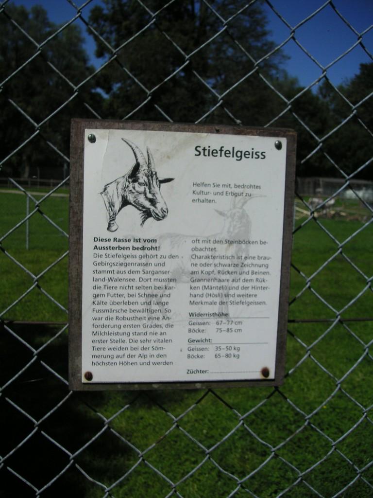 Stiefelgeiss Information