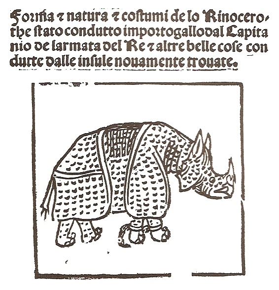 Rhinocerus at Lisbon by Giovanni Giacomo Penni, 1515. Image from Wikipedia